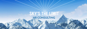skys the limit consulting